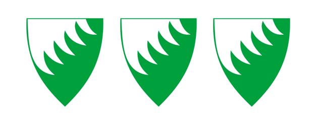 Grue kommune
