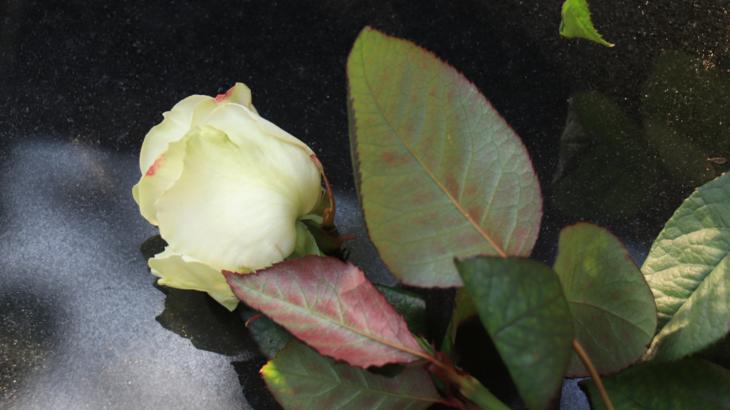 Blomster ved graven