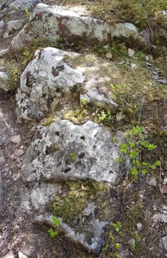 Hvilestein langs Finnevegen